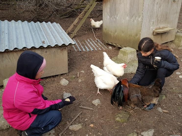 Bild_Bericht Kinderlager